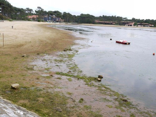 Lac Mrin côté Vieux Boucau