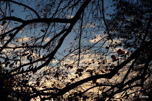 Salvagnac: fin de jour en automne