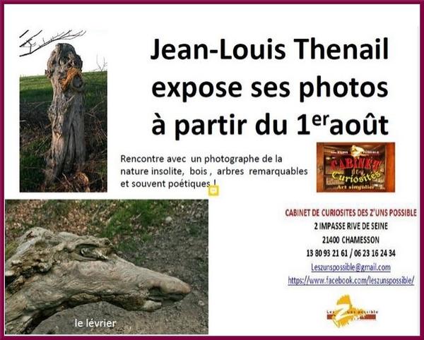 Jean-Louis Thenail expose à partir d'aujourd'hui au Cabinet des Z'Uns Possible de Chamesson