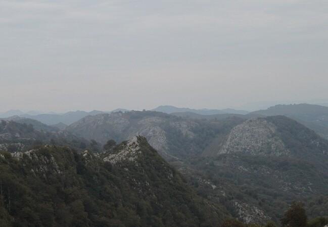 5 Sur la route du lac de Covadonga (21)
