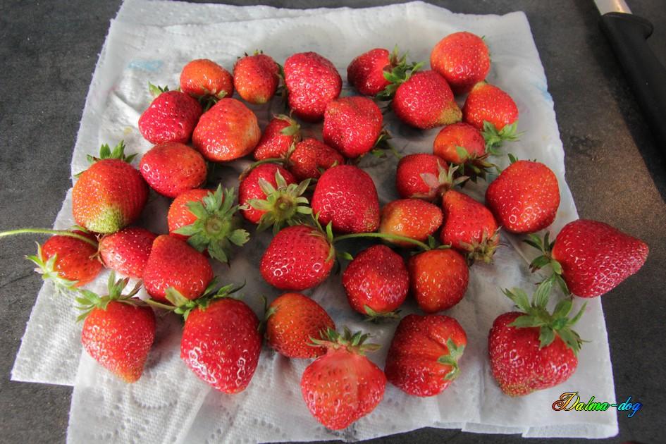 les première fraises de mon jardin