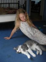 chien et chat