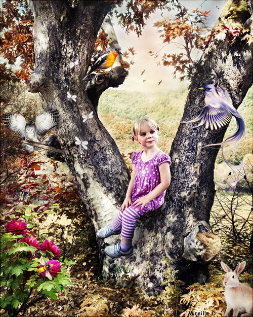Pause Magique en Forêt
