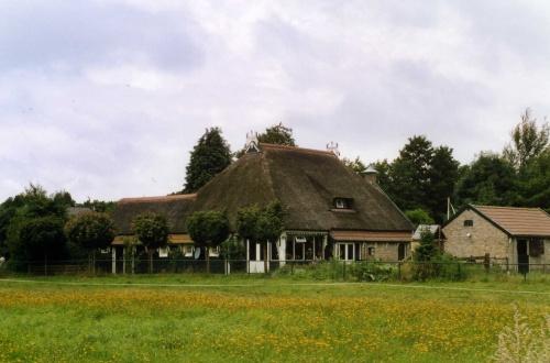 Voyage aux Pays-Bas, août 2005 (3) : Frise (Heerenveen)