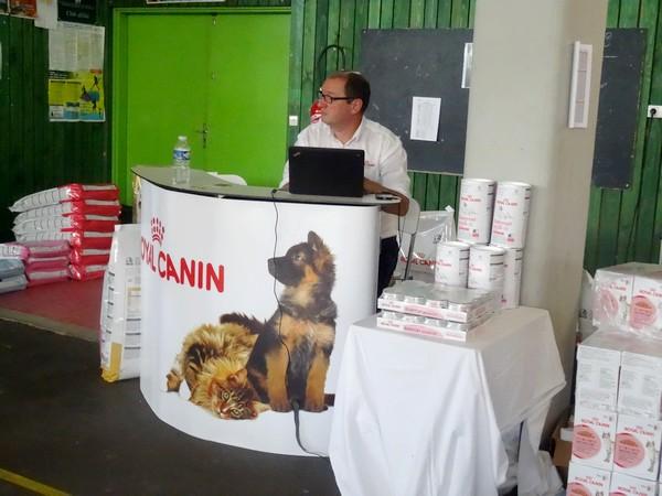 Une belle exposition féline a eu lieu dernièrement à Laignes....