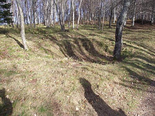 2010 0101hartmannswillerkopf0009