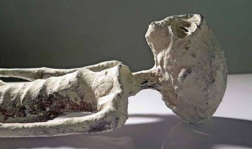 ALIEN PROJECT  -  Les Êtres de Nazca - page 6.