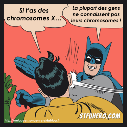 Memes Batman gifle Robin