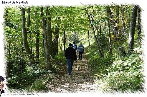 2011_16-10-chalais--1-.jpg