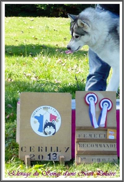 Fanouk recommandée 1er choix à la Nationale d'élevage (22 sept 2013)