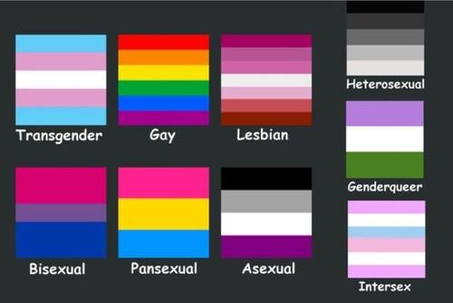 Qu'est ce que les LGBT+?