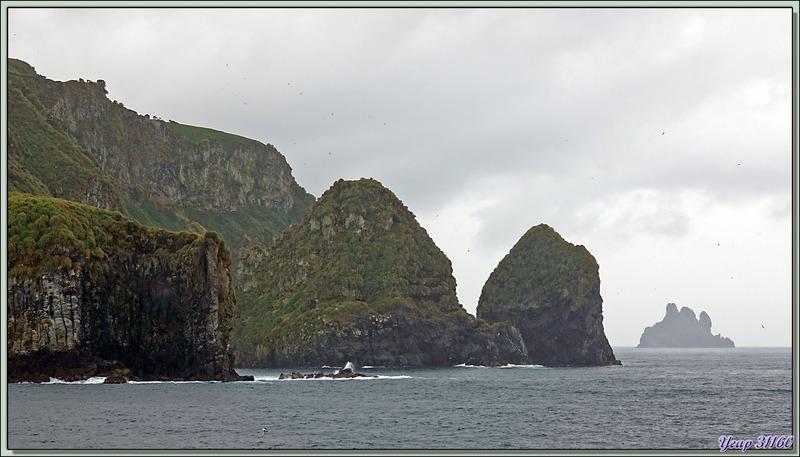 Vues panoramiques de la côte est de Gough Island sous les nuages et dans la brume - Tristan da Cunha