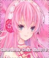 Commander un avatar