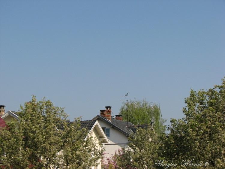 Ciel d'Alsace 410
