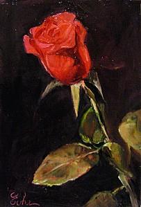 evhe-11014-rose