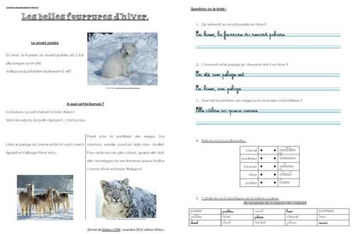 """Lecture documentaire """"Les belles fourrures d'hiver"""""""