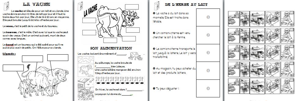 Préférence La vache - lilipomme TS34