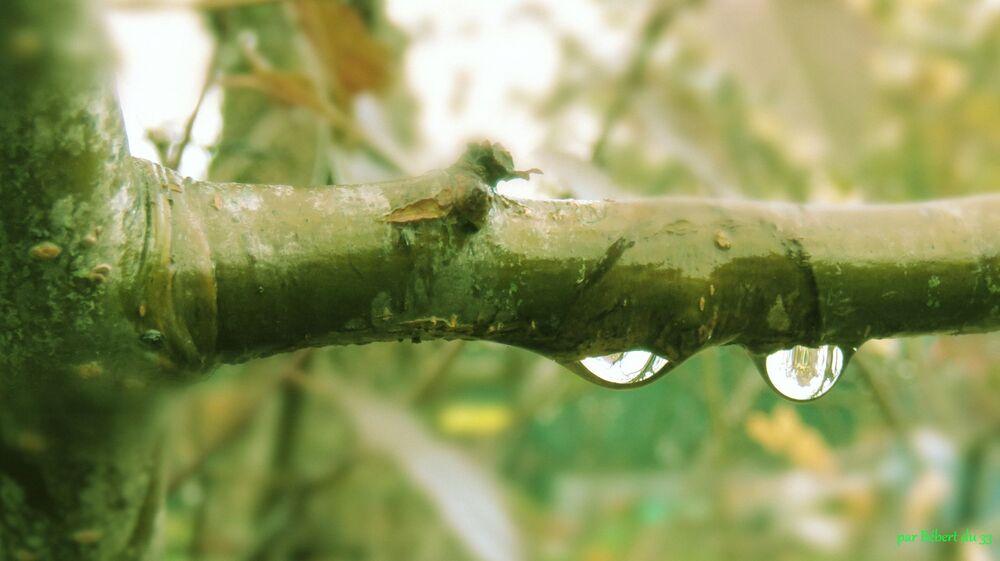 avec la pluie il y a des ...