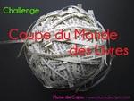 CHALLENGES (Mise à jour du 24/05)