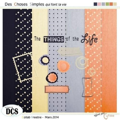 Des Choses Simples qui font la vie chez DCS