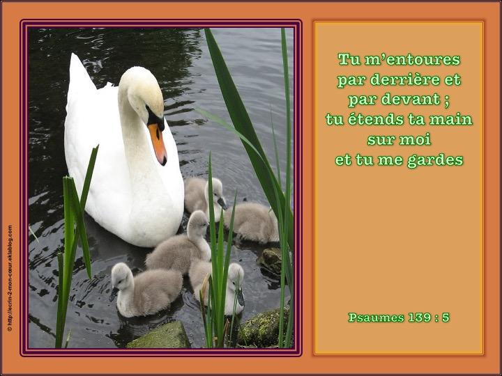 Tu étends ta main sur moi et tu me gardes - Psaumes 139 : 5