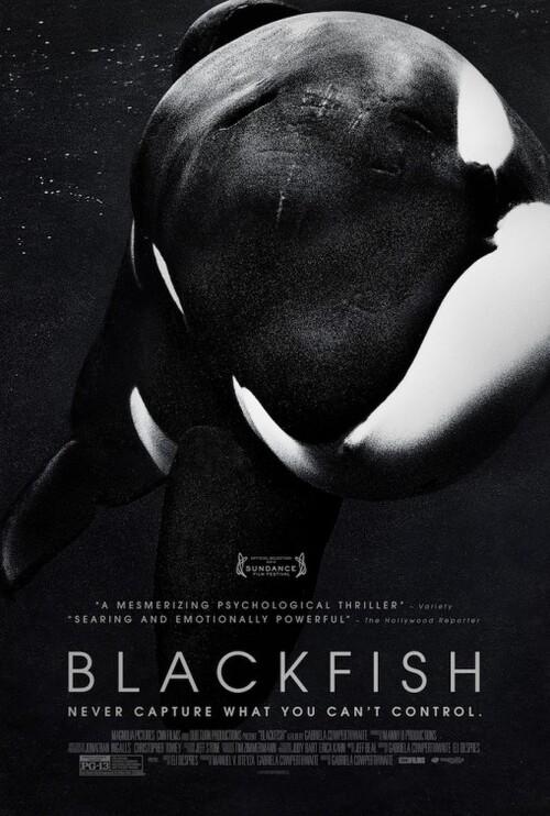 J'ai vu : Blackfish