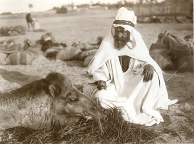 Chamelier Tunisien. 1910
