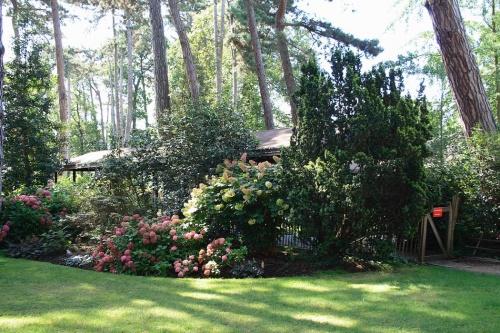 Le parc floral du bois de Vincennes – Au Fil de LAisne ~ Parc Floral Bois De Vincennes