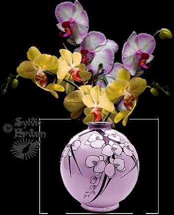 Tubes fleurs création 2