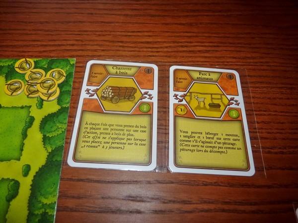 39 - Agricola 4 (cartes)