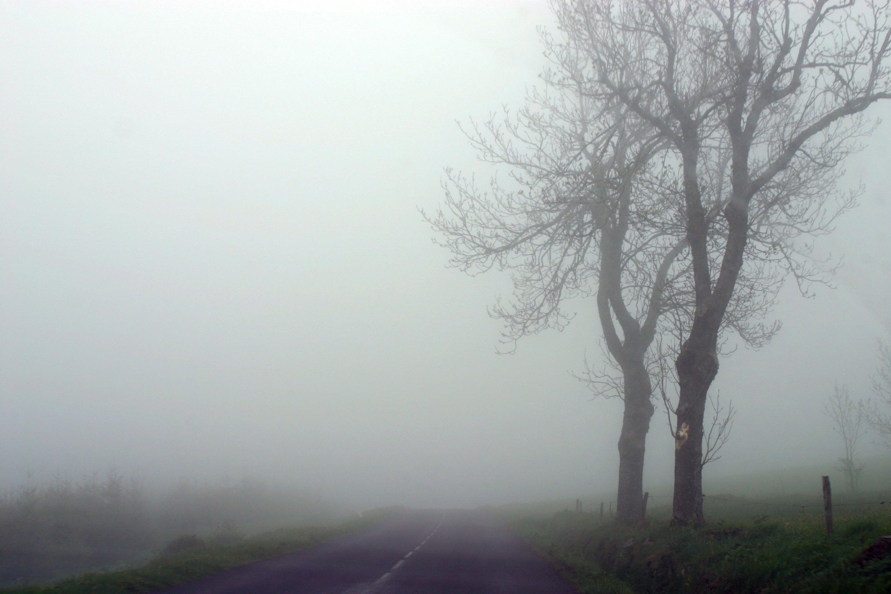 RAP2004 brouillard retour