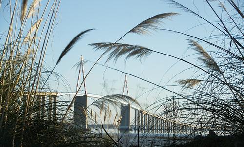 Le pont de St Nazaire achevé en 1975 est un pont à haubans multicâbles en éventail de 3356 m de longueur et de 68 m de hauteur.