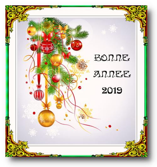 BONNE ANNEE 2019 (2)