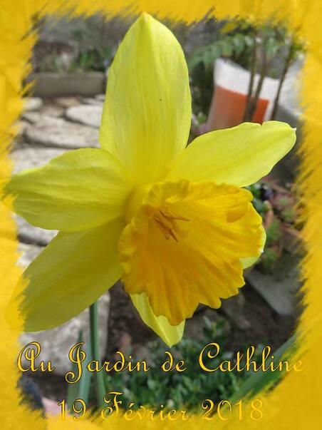 """Balade jardin et """"Avec la lune"""" du 21 au 28 février"""