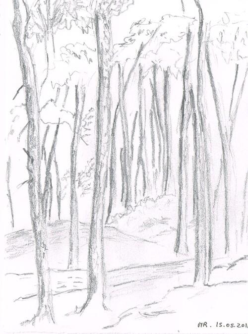 Aquarelle en forêt de Barbizon