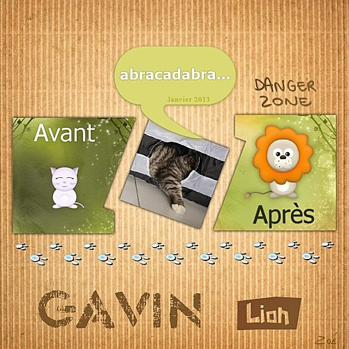 Gavin-Abracadabra-5