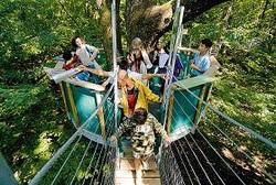 Forêt de Rambouillet : mettez-vous au vert et amusez-vous en famille