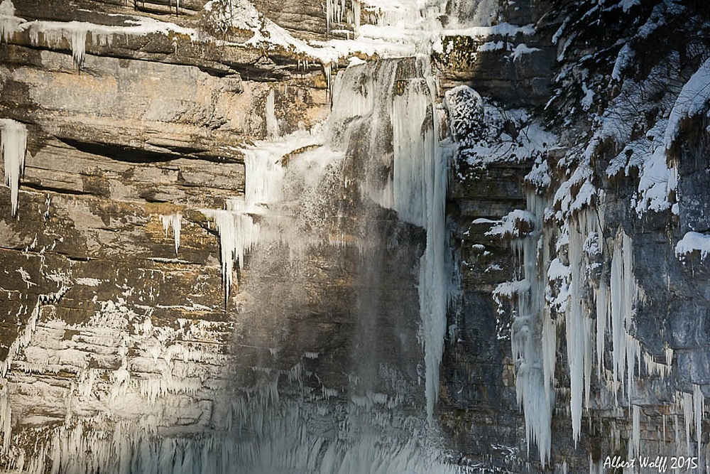 Un hérisson  pas trop  gelé - Part 3