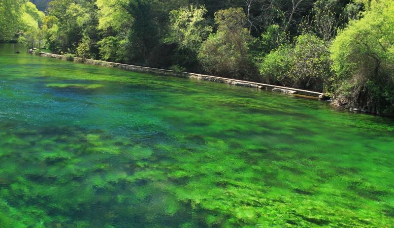 couleur menthe à l'eau