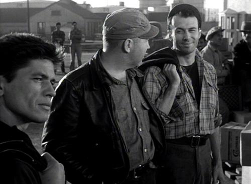 Dans la gueule du loup, The mob, Robert Parrish, 1951