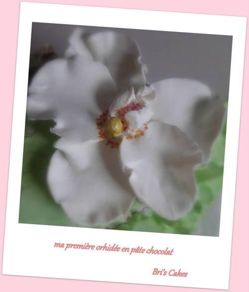 Orchidée en pâte de chocolat