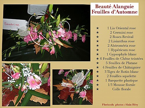 2012 10 23 beaute alanguie (3)