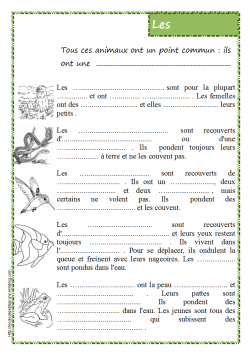 Les Vertébrés (classification)