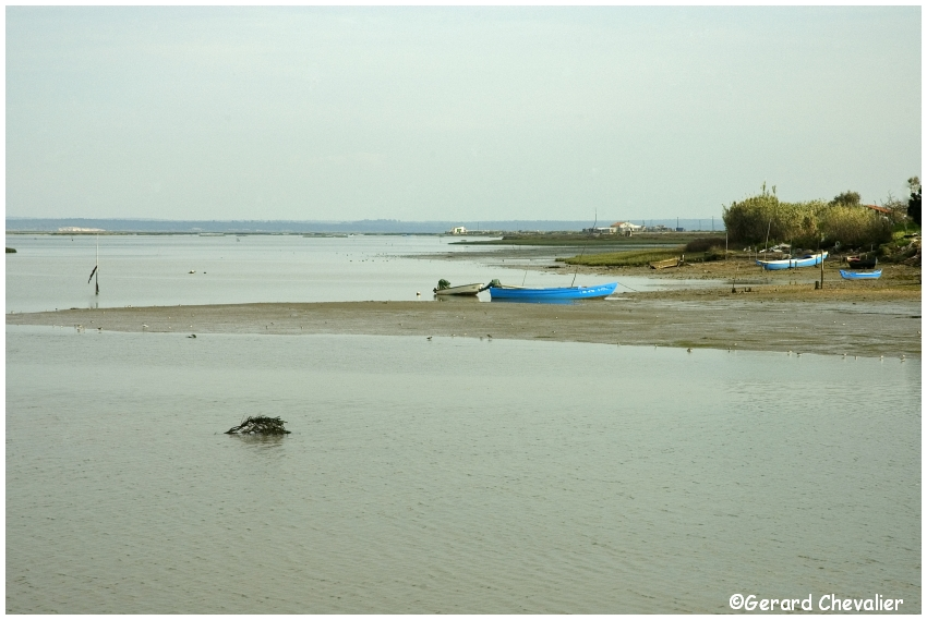 Estuaire du Sado 1 - (Portugal)