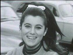 Décembre1966 : le pull à col roulé vert, noir et blanc