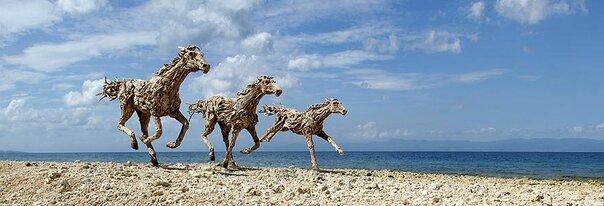 sculptures de chevaux en bois flotte par James Doran Webb 1   Les sculptures de chevaux en bois flotté de James Doran Webb   Sculpture recyclage photo James Doran Webb image galop cheval bois accouchement