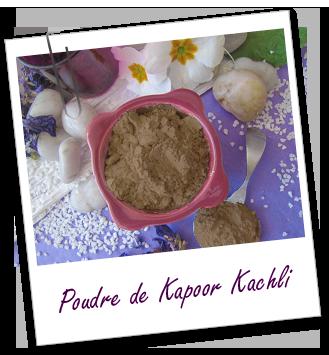 Poudre ayurvédique Kapoor Kachli Aroma-Zone