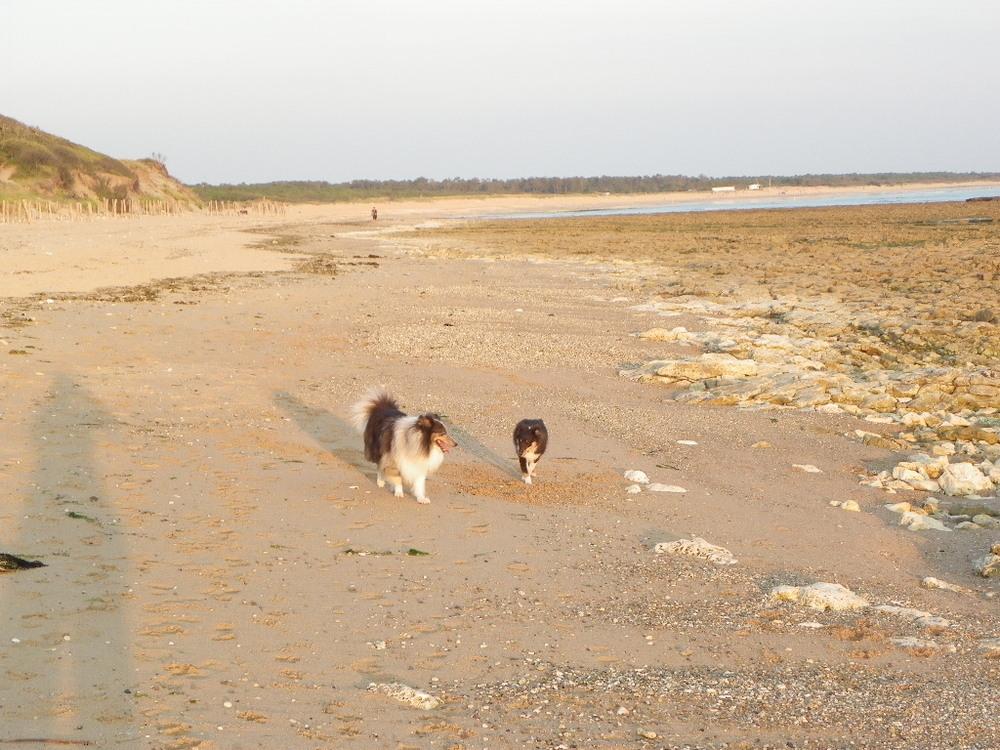 Promenade dans Dolus