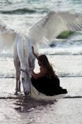 femme cheval blanc