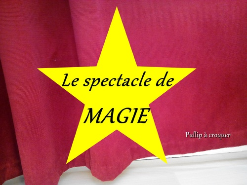 Le spectacle de magie